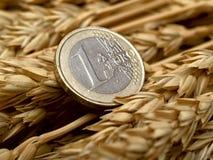 Euro e orelhas do trigo fotografia de stock