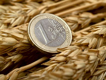Euro and ears of wheat Stock Photography