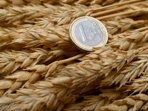 Euro ed orecchie di frumento Fotografia Stock
