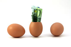 Euro and eggs. Euro is coming into the world Royalty Free Stock Images