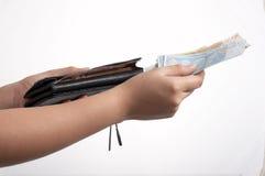 Euro en portefeuille Royalty-vrije Stock Afbeelding