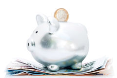 Euro en spaarvarken Stock Afbeelding