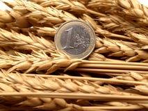 Euro et oreilles de blé Image libre de droits