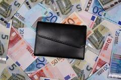 Euro et portefeuille d'argent Photo stock