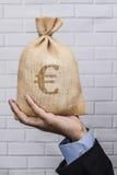 Euro för pengarsäcksvart Royaltyfri Foto