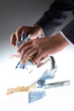 Euro grabber Royalty Free Stock Photos