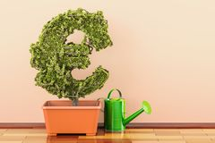 Euro green symbol in flowerpot with watering can. 3D rendering. Euro green symbol in flowerpot with watering can. 3D Royalty Free Stock Photography