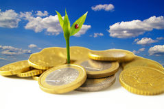 Euro growth. New growth from Euro coins - financial concept Stock Photos
