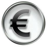 Euro icon grey Stock Image