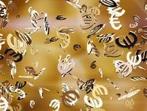 Euro icons Royalty Free Stock Photo