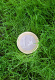 Euro lying in a grass Royalty Free Stock Image