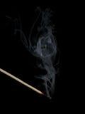 Euro- máscara no fumo Imagens de Stock Royalty Free