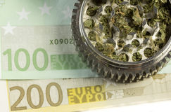 Euro & marijuana in grinder Stock Images