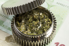 Euro & marijuana in grinder Royalty Free Stock Images