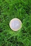 Euro menzogne in un'erba Immagine Stock Libera da Diritti