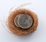 Euro monete in nido fotografia stock libera da diritti