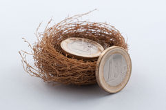 Euro monete in nido fotografia stock