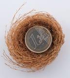 Euro monete in nido fotografie stock