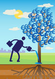 Euro Money Tree Stock Images