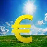 EURO muntmodel op het gebied Stock Foto's