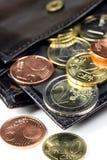 Euro na carteira Fotos de Stock Royalty Free