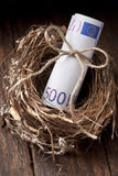 Euro Nest Egg Money. A nest with a roll of Euro money on a wood background Stock Images