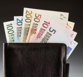 Euro- notas com reflexão Fotos de Stock Royalty Free