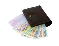 Euro- notas de banco de cinco até cinco cem em uma bolsa Fotografia de Stock