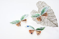Euro notes in the form of butterflies on decorative glittering leaf. On white background Stock Image