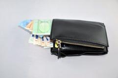 Euro och plånbok Fotografering för Bildbyråer