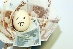 Euro- ovo de ninho Fotos de Stock Royalty Free