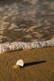 Euro pièce de monnaie dans le sable Photo stock