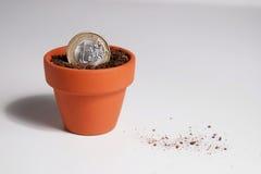Euro pièce de monnaie plantée dans un pot (débris) Image stock