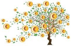 euro pieniądze drzewo Fotografia Royalty Free