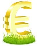 Euro segno su erba Fotografia Stock Libera da Diritti