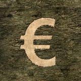 Euro sign on bark Stock Photo