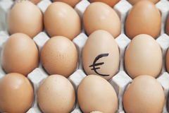 Euro sign on egg surrounded by plain brown eggs in carton Stock Image