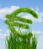Euro sign made of green grass. International euro sign made of green grass Vector Illustration