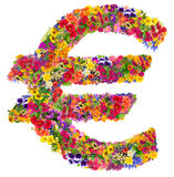 Euro sign from  summer flowers Royalty Free Stock Images