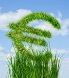 Euro signe fait en herbe verte Images libres de droits