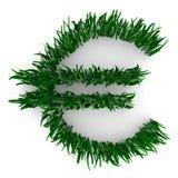 Euro- sinal feito da grama Imagem de Stock Royalty Free