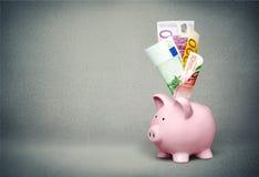 Euro, soldi, porcellino salvadanaio Fotografia Stock