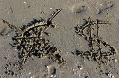 Euro symbol erased and the dollar sign on the beach Royalty Free Stock Photography