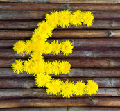 Euro symbol made of flowers Royalty Free Stock Images