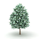 Euro tree Royalty Free Stock Image