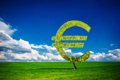 Euro tree. Painted tree in the form of euro Stock Photo