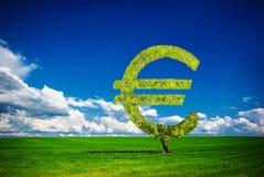 Euro tree Stock Photo