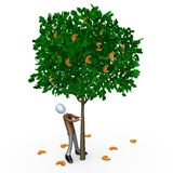 Euro Tree Royalty Free Stock Images