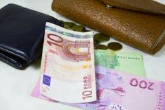 Euro y cartera de cuero dos Imagen de archivo libre de regalías