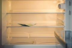Eurobanknoten in einem leeren Kühlschrank: eine Handvoll von 100 Eurobanknoten in einem leeren Kühlschrank Weibliches Handnehmeng Lizenzfreie Stockfotografie